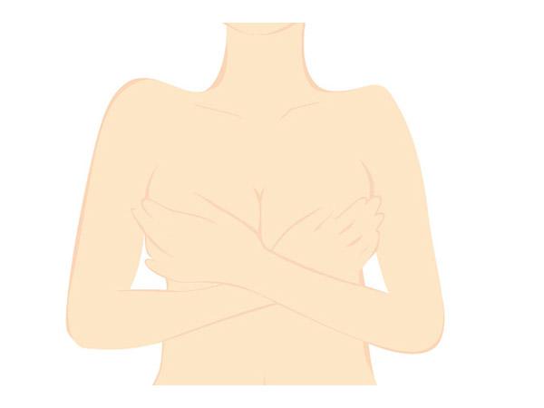 胸 エロゲ関係者によるボディラインのこだわり